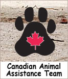 CAAT,Canadian Animal Assistance Team,Ontario,animal rescue